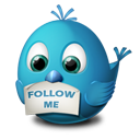 Подписаться на twitter автора блога